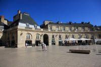 dijon-at-day-11