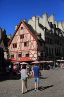 dijon-at-day-16