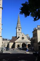 dijon-at-day-21