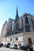 dijon-at-day-24