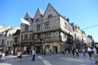 dijon-at-day-26
