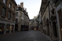 dijon-at-day-36