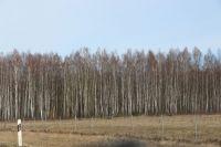litauen-landschaft-10