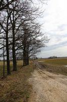 litauen-landstrasse-18