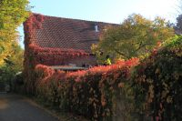 fulda-autumn-01