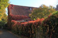 fulda-autumn-01