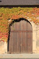 fulda-autumn-04