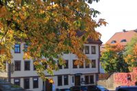 fulda-autumn-21