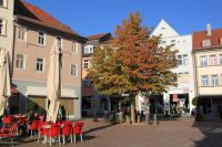 fulda-autumn-47