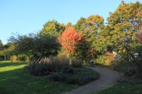 fulda-autumn-57